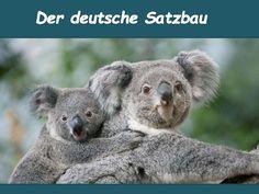 Der deutsche Satzbau Position vom Subjekt, Dativ-, Akkusativergänzung + TEKAMOLO-Angaben Theorie und Übungen