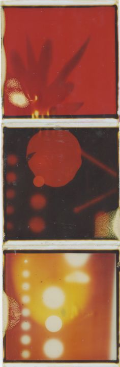Patrick Winfield: Photogram (Sandy 10/30) A Level Exams, Elizabeth Midford, Elixir, Tales From The Borderlands, Old Best Friends, Light Project, Polaroids, Bungou Stray Dogs, Abstract Photography