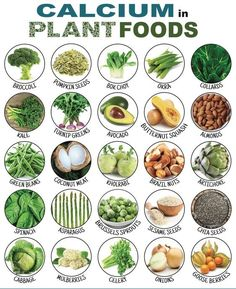 "25 Calcium-Rich Plant Foods That DON'T Come From Dairy! The first thing most people think of when they hear calcium is ""milk."" This is mainly because the American dairy industry heavily promotes the consumption of milk as a human's sole source of calcium. Vegan Nutrition, Health And Nutrition, Health Tips, Nutrition Tips, Universal Nutrition, Nutrition Shakes, Broccoli Nutrition, Nutrition Month, Nutrition Store"