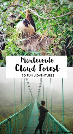 Monteverde Cloud Forest Reserve in Costa Rica is a cool place with mist, hanging bridges and wildlife. Want some inspiration for your Monteverde trip? Get it here.