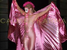 Flamingo Ballet  - stunning staged act.  Hint of Zoo themed entertainment to hire across the UK inc Manchester, London, Birmingham, Brighton and Wales. www.calmerkarma.co.uk Tel:  020 3602 9540