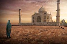 "Foto ""Taj Mahal"" by Mohammed Abdo (@abuazzam79) #500pxFoto ""Solo Tree"" by Nasser Osman #500px"