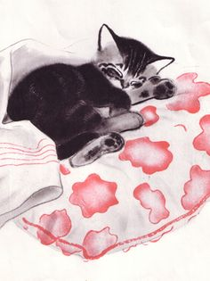 Illustration by Clare Turlay Newberry, Kittens, Mittens, Harper. looks like charlotte Pretty Cats, Cute Cats, Fröhliches Halloween, Art Kawaii, Cat Sketch, Watercolor Cat, Vintage Cat, Cat Drawing, Crazy Cats