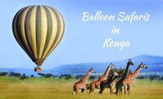 Exotic Places, Safari, Kenya