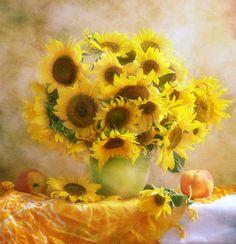 Amarillo #girasol #flores