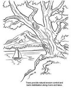 spring landscape coloring pages yahoo image search results - Mountain Landscape Coloring Pages