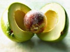 O abacate é uma fruta bastante benéfica para a nossa saúde.