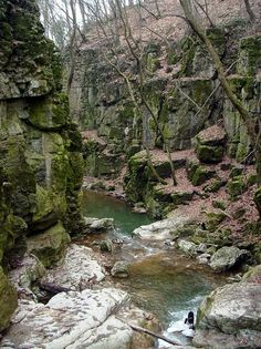 Canyon of Gaja creek in Eastern Bakony Hills, Transdanubia Hungary Cool Landscapes, Beautiful Landscapes, Heart Of Europe, Camping Places, Budapest Hungary, Adventure Awaits, Natural Wonders, Homeland, Beautiful Places