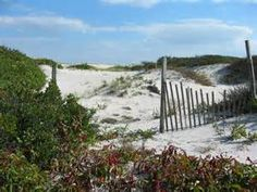 Island Beach State Park official site