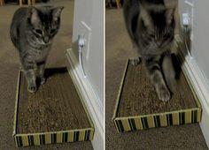 Cardboard Cat Scratcher http://www.handimania.com/diy/cardboard-cat-scratcher.html