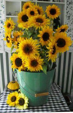 Sunflower arrangement in green bucket