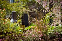 Hobbs garden early spring 2013 by Adam Streames