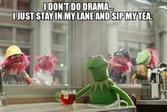 Kermit the frog memes - But that's none of my business though