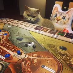Boardgame - Kacper Ryx (Polish history-based game).