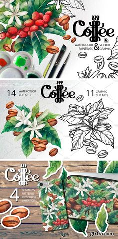 CM - Watercolor and Graphic Coffee Plants 1643046