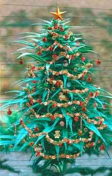 Marijuana glass ornaments for the tree) →follow← ☮❤✌ Medical ...