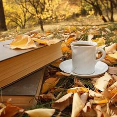 Getting tickled by those words, those pages, sensuality at its peak. Accentuate the sensation by spritzing Skinn. Coffee And Books, Coffee Love, Coffee Drinks, Coffee Cups, Autumn In My Heart, Coffee Cup Photo, Hot Chocolate Coffee, Lovely Smile, Good Morning Good Night
