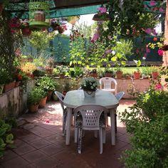 Il mio patio tra i fiori: un angolo,di paradiso...!