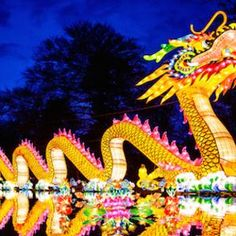 An earlier sunset during this season just means more time to enjoy the bright and colorful lights around the city! Celebrate the holidays by visiting these festivals, events, and illuminated displays in Columbus. 1. Ohio Chinese Lantern Festival The