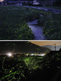 Ensaio fotográfico incrível do japonês Karo Yuki.