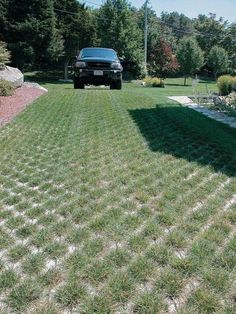 Permeable paver driveway | Permeable Pavers: Patios, Walkways, and Driveways Made of Porous ...