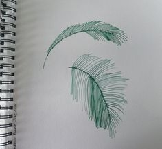 Palm leaf inspired sketches I drew while at the Beach in SW Florida this past June.