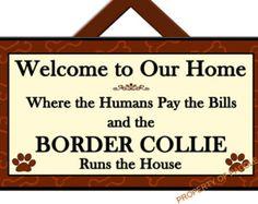 BORDER COLLIE Runs the House - Welcome Sign - Dog Plaque - Home Decor - Gift Idea - Art - Dog Sign