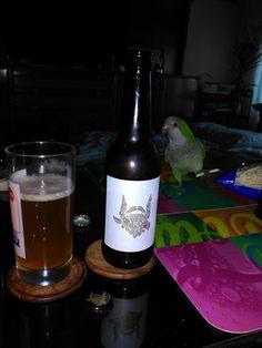 Cerveza artesanal Segovia
