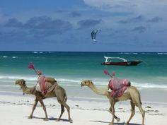 ✿ڿڰۣ(̆̃̃•Aussiegirl Diani Beach, Kenya, would be lovely to visit.