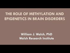 """""""The Role of Methylation and Epigenetics in Brain Disorders"""" presented by William J. Walsh, PhD"""