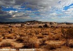 Mojave Desert, wow, so cool!  Jeep safari is a must!