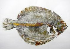 Brill (amarillo) w - Mis ideas Japanese Nature, Japanese Art, Gouache, Jellyfish Art, River Cottage, Meet The Artist, Fish Print, Nature Prints, Mural Art