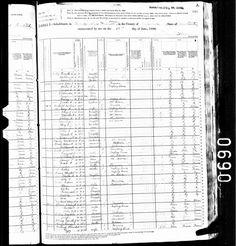 1880 Franklin Parish Denham United States Federal Census taken in Tompkinsville, Monroe, Kentucky.