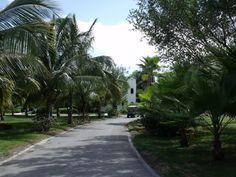 El Dorado royale all inclusive resort in Playa Del Carmen Mexico. the best vacation EVERRRR