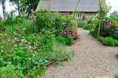 Swedish cottage garden