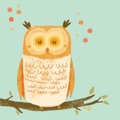 owl by Marina Aizen