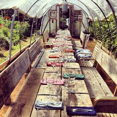 dining in a greenhouse // by Gabriela Herman