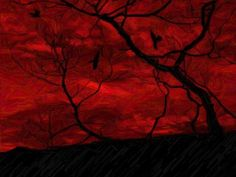 Red Crow Wallpaper   galleryhip.com - The Hippest Galleries!