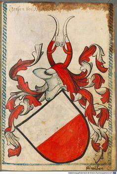 Scheibler'sches Wappenbuch Süddeutschland, um 1450 - 17. Jh. Cod.icon. 312 c  Folio 13