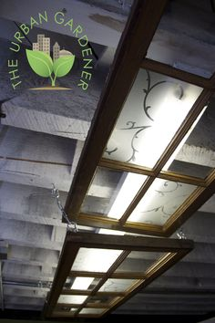 Hide those ugly fluorescent lights with recycled windows. Hide those ugly fluorescent lights with re Recycled Windows, Old Windows, Florescent Light Cover, Funky Junk Interiors, Shop Lighting, Lighting Ideas, Shop Window Displays, Light Covers, Ladder Decor