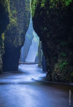 19 Most Beautiful Places to Visit in Oregon - Page 10 of 19 Oneonta Narrows - Columbia River Gorge, Oregon. Located at the Columbia River at River Mile the falls are just half a mile up Oneonta Creek. The best way for visitors to reach Oneonta Narrows Oregon Travel, Usa Travel, Oregon Coast Roadtrip, Beach Travel, Oregon Tourism, Oregon Beaches, Oregon Vacation, Oregon Waterfalls, Oregon Road Trip