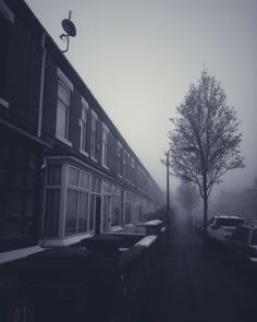 Foggy mornings in spring! #morning #foggy #cold #street #street_perfection #street_photography #pattern #windows #buildings #homes #blackandwhite #lovely_architecture #trees #frizzy #spring #iphonography #ks #photooftheday #lovely_view
