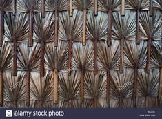 Leaf Background, Background Images, Mood Images, Brown Sugar, Exotic, Palm, Tropical, Leaves, Stock Photos