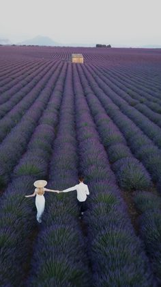 Sky Aesthetic, Aesthetic Movies, Valensole, Aesthetic Photography Grunge, Beautiful Photos Of Nature, Cute Couple Videos, Sunset Photography, Lavender Fields France, Wedding Videos