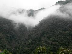 montañas de Colombia