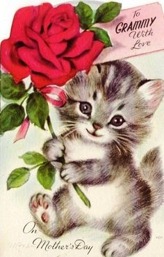 Marjorie Cooper Mothers Day Kitten Card To Grammy Happy Birthday Mommy Cats