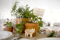 terracotta potted centerpieces