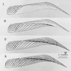 First step : Begin to exercise immediately! Work by - Microblading Eyebrows Sketch, Mircoblading Eyebrows, How To Draw Eyebrows, Arched Eyebrows, Microblading Eyebrows Training, Phibrows Microblading, Eyebrow Makeup Tips, Permanent Makeup Eyebrows, Eyebrows Step By Step