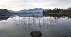 The Nordic Lotus Ikebana Blog: Andy Goldsworthy - Bamboo in Japan