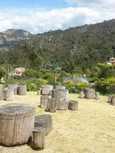 Piqueteadero Casa de Piedra Firewood, Crafts, Home, Decks, Crafting, Diy Crafts, Craft, Arts And Crafts, Wood Fuel